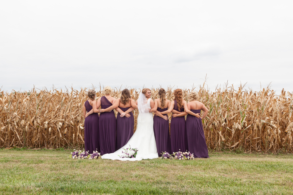bridesmaids and cornfield